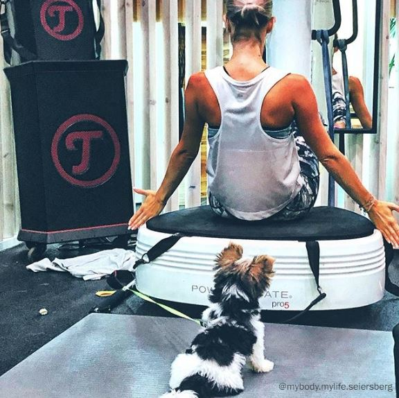 Frau mit Hund beim Training neben Teufel Rockster Boxen.